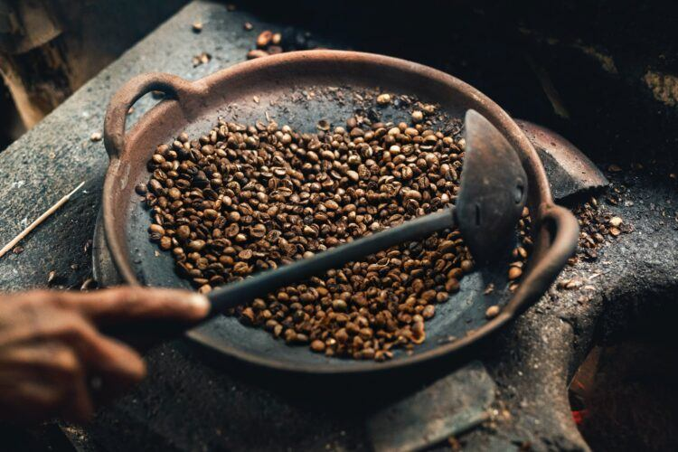 Coffee Bean Guide
